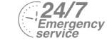 24/7 Emergency Service Pest Control in West Drayton, Harmondsworth, Sipson, UB7. Call Now! 020 8166 9746