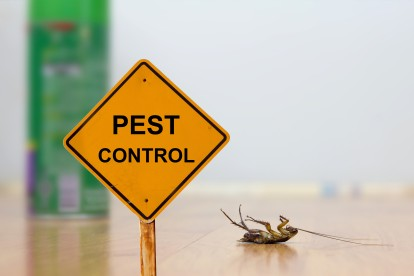 Pest Contol in West Drayton, Harmondsworth, Sipson, UB7. Call Now 020 8166 9746